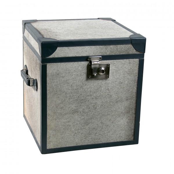 Treasure Moo Box