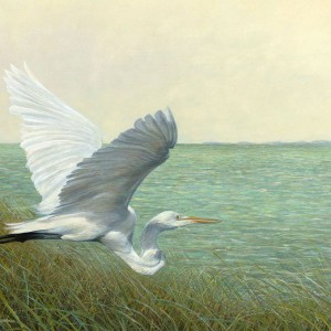 Great Egret Giclee by Tripp Harrison at IK Yacht Design