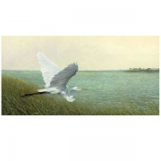 Great Egret Giclee